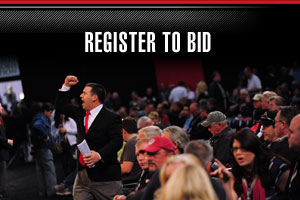 Register to bid for Scottsdale 2015